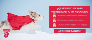 profesionales-veterinarios-veterinario-animales-exoticos